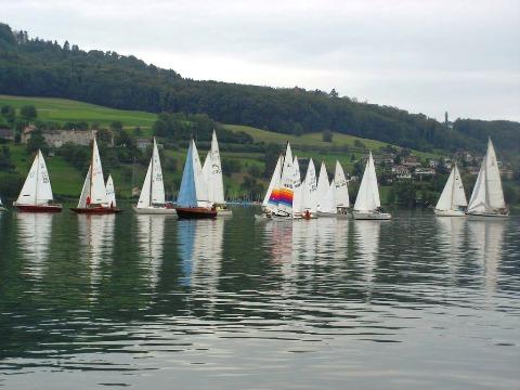 parusnaya-regatta