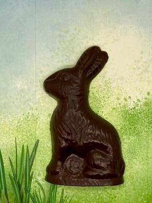 Глава 10 Мой «шоколадный заяц»
