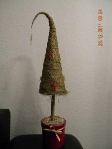 novogodniy-bonsay
