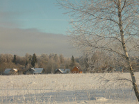 tarusa-zimoy