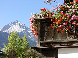 Typisch Schweiz