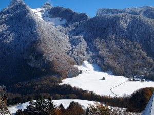 v-alpah-shweicaria