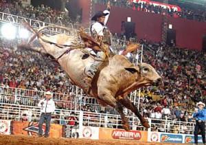 rodeo-v-Brasilii