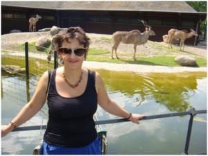 berlin-zoo-gornie-kozli