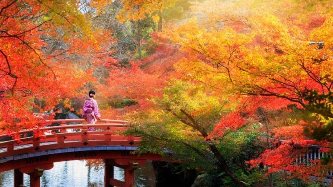 Культ времен года в Японии