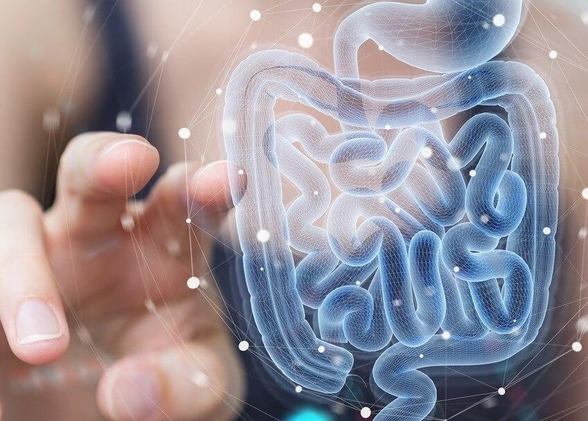 Магия микробиома - Часть 2 Индивидуальная мини-фабрика